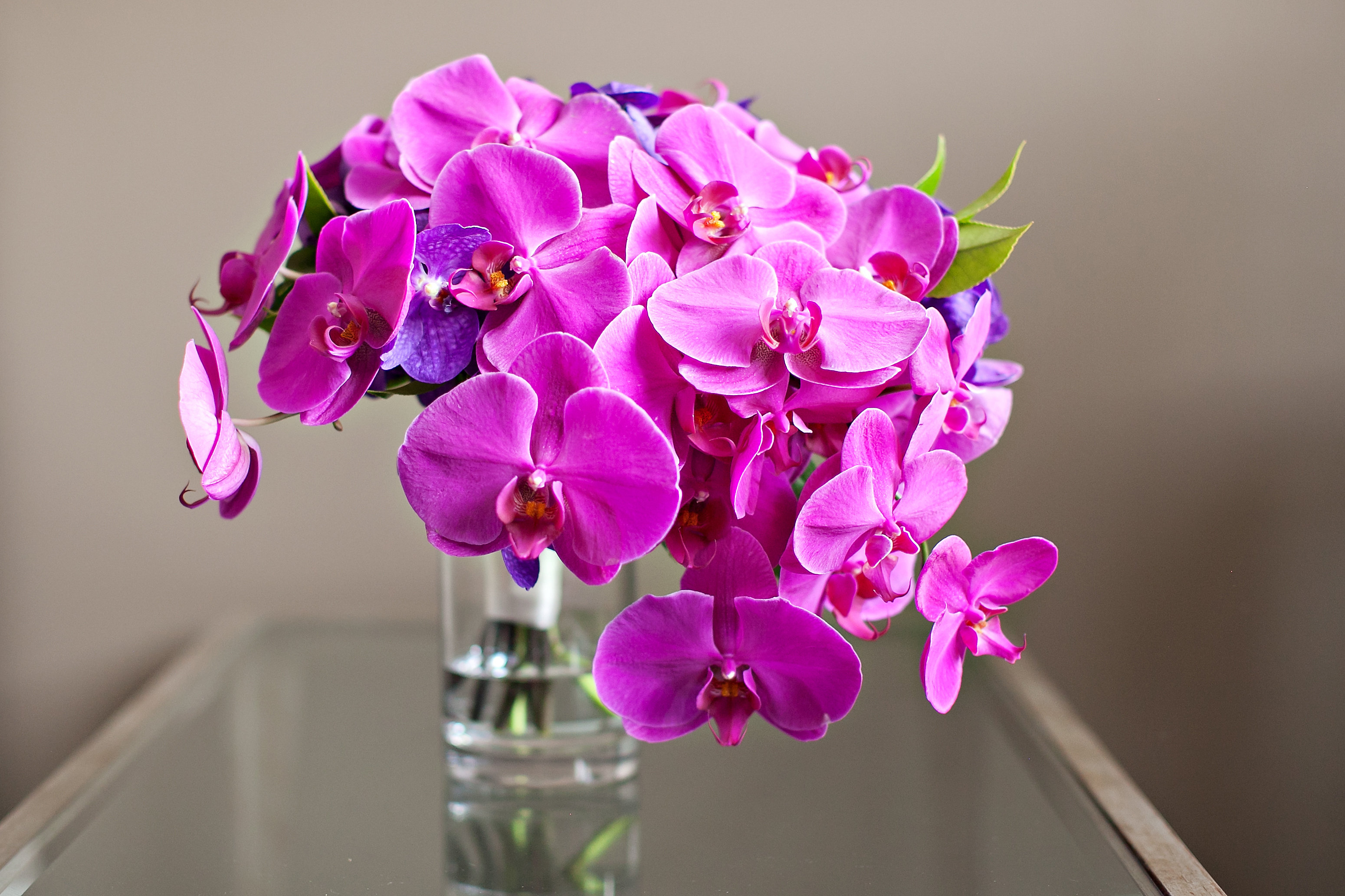 Luxury Flower Delivery: Some Significant Facts That Men Must Know ...