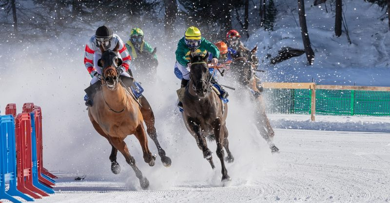 Types Of NTRA Horse Racing